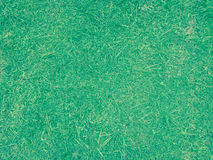 Aksamitna zielona trawa Zdjęcie Stock