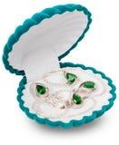 Aksamitny biżuterii pudełko Fotografia Stock