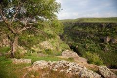 Aksu-Fluss-Schlucht Stockbild