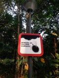 Akta sig av fallande Durians Arkivbild