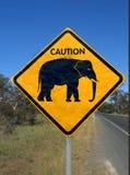 akta sig elefanten royaltyfria foton