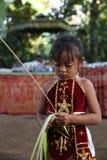 Aktion durch die Waisen einer Kakaos, des Kaffees und der Gewürzplantage am Dorf von Kalibaru in Ost-Java Indonesia stockfotografie