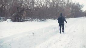 Aktiv eine ältere Frau teilgenommen an dem nordischen Gehen mit Stöcken im Winterwaldgesunden Lebensstilkonzept fällig stock video