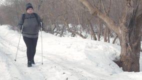 Aktiv eine ältere Frau teilgenommen an dem nordischen Gehen mit Stöcken im Winterwaldgesunden Lebensstilkonzept fällig stock video footage