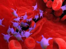 Aktiva trombocyt royaltyfri illustrationer