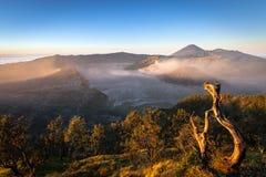 Aktiva volcanoes Bromo och Semeru som ses i morgonljuset, Java, Indonesien Royaltyfri Foto