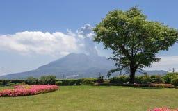 Aktiva Vulcan Sakurajima som täckas av grönt landskap Taget från den underbara trädgården Sengan-en Lokaliserat i Kagoshima, Kyus royaltyfri fotografi