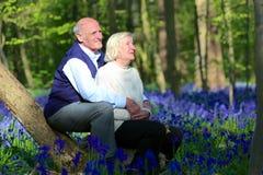 Aktive ältere Paare, die im Wald wandern Lizenzfreie Stockfotos