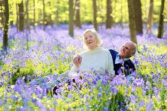 Aktive ältere Paare, die im Wald wandern Stockbild