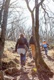 Aktive Familie, die auf den Gebirgspfad im Wald geht lizenzfreies stockbild
