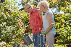 Aktive glückliche ältere Frau, die nahe bei ihrem Ehemann während der Gartenarbeit steht lizenzfreie stockbilder