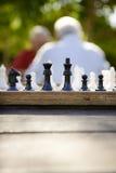 Aktive Rentner, zwei alte Freunde, die Schach am Park spielen Stockfotografie