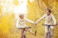 Aktive Senioren, die Fahrrad reiten Stockfoto