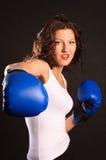 Aktiver Boxer. Stockfotografie
