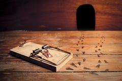 aktiverad mousetrap för husmus utanför fotoet Arkivfoto