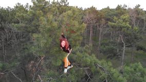Aktives sportliches Rothaarigemädchen klettern oben auf die Oberseite der Kiefers Luftschuss-Koniferenwald stock video footage