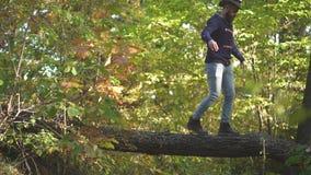 Aktivt folk Aff?rsf?retagkl?ttring Bekymmersl?st höstmannen i skog som fotvandrar i, parkerar Atmosfärisk utomhus- höst arkivfilmer