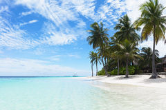 aktuell strand Royaltyfri Bild