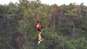 Aktywna sporty rudzielec dziewczyna wspina się w górę wierzchołka sosna na Antena strzelaj?cy Iglasty las zdjęcie wideo