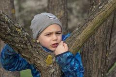 aktywnego chłopiec gałąź dziecka wspinaczkowa lasowa męska natura bawić się drzewnych potomstwa Zdjęcie Royalty Free