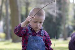 Aktywny chłopiec wskazywać drewniany wtyka w górę podczas gdy chodzący w wiosna parku, dziecko chłopiec ma zabawę bawić się plene obrazy stock