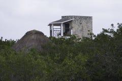 Akumal墨西哥 免版税图库摄影