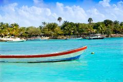 Akumal Caribbean beach in Riviera Maya Royalty Free Stock Images