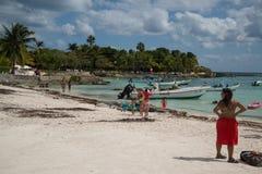 Akumal Beach Royalty Free Stock Photos