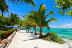 Akumal beach in Mexico Royalty Free Stock Image