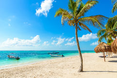 Akumal beach - paradise bay Beach in Quintana Roo, Mexico royalty free stock photos