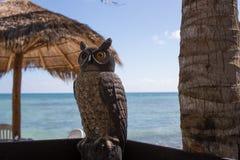 Akumal Caribbean beach Stock Photos