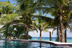 Akumal Caribbean beach Royalty Free Stock Photos