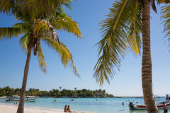 Akumal Caribbean beach - Mexico Mayan Riviera. Akumal is a famous Caribbean beach with a nature reserve of turtle in Mexico the Yucatan Mayan Riviera Stock Photo