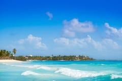 Akumal Caribbean beach in Riviera Maya Royalty Free Stock Image