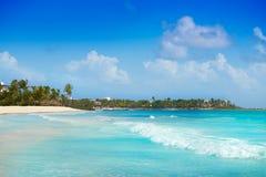 Akumal Caribbean beach in Riviera Maya Royalty Free Stock Photo
