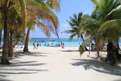 Akumal Tortuga plaża Fotografia Stock