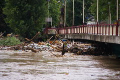 Akumulujący śmieci któremu przynoszą wodę Fotografia Stock