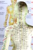 Akupunktura model 04 Zdjęcie Stock