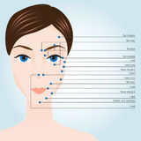 Akupunktura punkty na twarzy Obrazy Stock