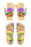 Akupunktura - ręka, żadny tekst odizolowywający na bielu ilustracji