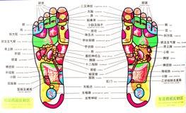 Akupunkturpunkt Royaltyfri Bild