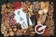 Akupunkturterapi- och kinesörter royaltyfria bilder