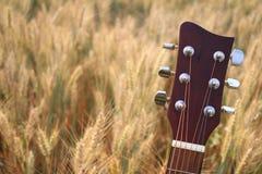 Akustikgitarrekopf und abstimmende Schlüssel lizenzfreie stockbilder