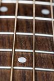 Akustischer Bass Guitar Fretboard Close Up Stockbilder