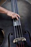 akustisk bas- dubbel spelare Royaltyfri Foto