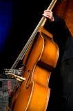 akustisk bas- dubbel spelare Arkivbilder
