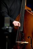 akustisk bas- dubbel spelare Arkivbild