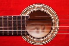 Akustisk gitarr. arkivbilder