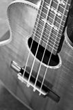 Akustisk gitarr, extremt grund dof. royaltyfri fotografi