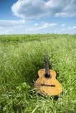 Akustisk gitarr i gräsfältet royaltyfri fotografi